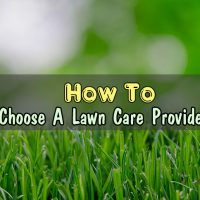 How To Choose A Lawn Care Provider