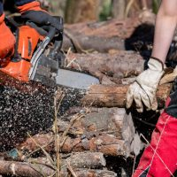 How Do You Prevent Chainsaw Accidents?
